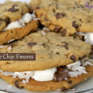 Chocolate Chip Smores