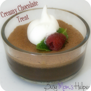 Creamy Chocolate Treat / Busy Mom's Helper