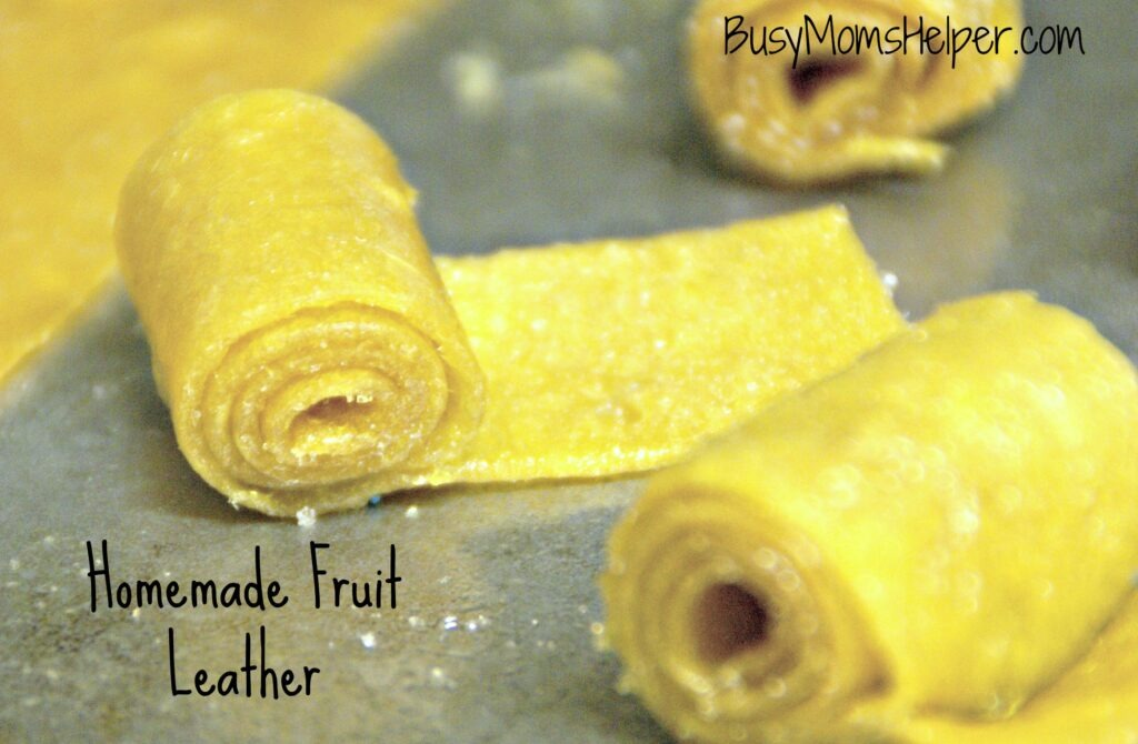 Homemade Fruit Leather / Busy Mom's Helper