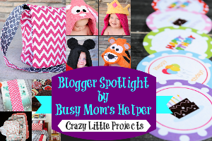 Blog Spotlight: Crazy Little Projects