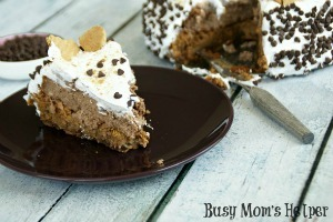 S'mores Cheesecake / by Busy Mom's Helper #Smores #Cheesecake #Dessert #Chocolate #Marshmallow