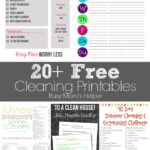20+ Free Cleaning Printables