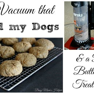 The Vacuum that Saved my Dogs & a Peanut Butter Dog Treat Recipe