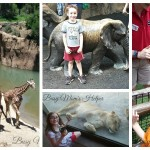 Our Day at Dallas Zoo