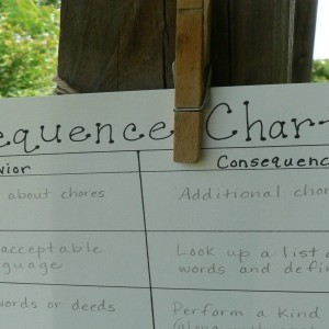 Consequence Chart for Moms and Kids