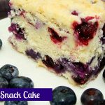 Delicious Blueberry Snack Cake