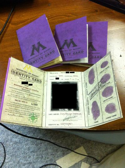 100 diy harry potter ideas busy moms helper ministry of magic identification card found on the rpf round up by busy moms 10 harry potter solutioingenieria Image collections