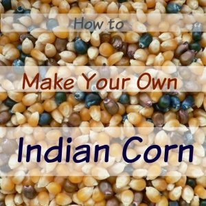 Make Your Own Indian Corn
