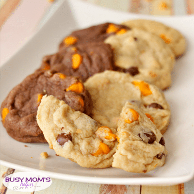 Pumpkin Pudding Cookies - in 3 different varieties! recipe by BusyMomsHelper.com / the perfect snack or dessert for pumpkin-lovers