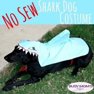 No Sew Shark Dog Costume / by BusyMomsHelper.com #ad #PawsToSavor