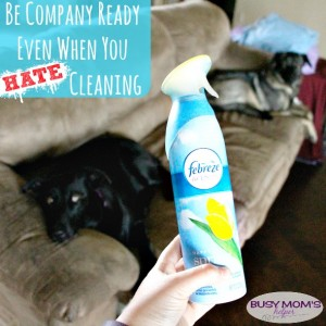 Be Company Ready Even When You HATE Cleaning
