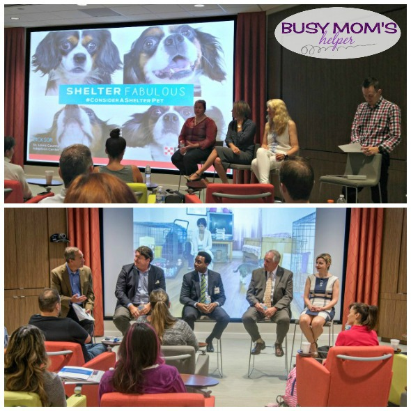 Purina supports many local and national charities #MeetPurina #ad