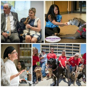 Meet Purina: The People and the Pets