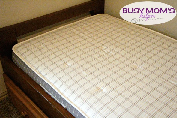 brentwood the healthier mattress choice for your kids latexfree u0026 - Brentwood Mattress