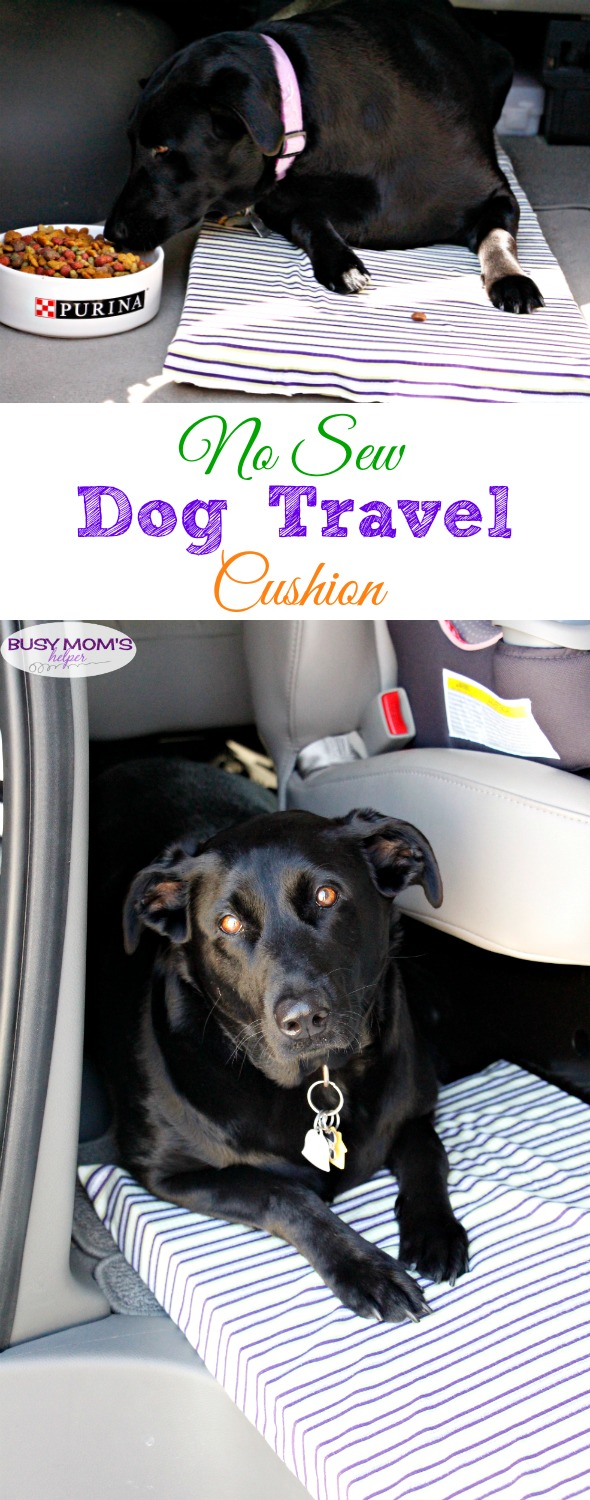 No Sew Dog Travel Cushion #FeedDogsPurina #ad @target