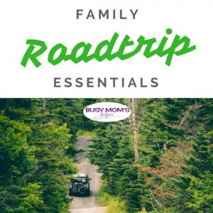 Family Roadtrip Essentials - Busy Mom's Helper