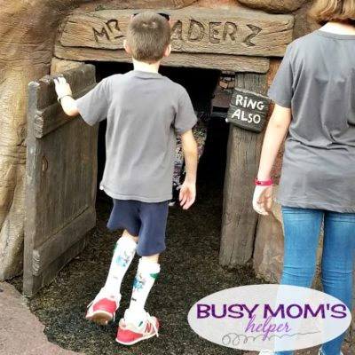 Our Experience with Disney Parks Disability Access Service #waltdisneyworld #das #disability #disabilityservice #familytravel #travel #disneyparks #disney #disabilitytravel #kids