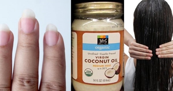 Amazing Uses of Coconut Oil