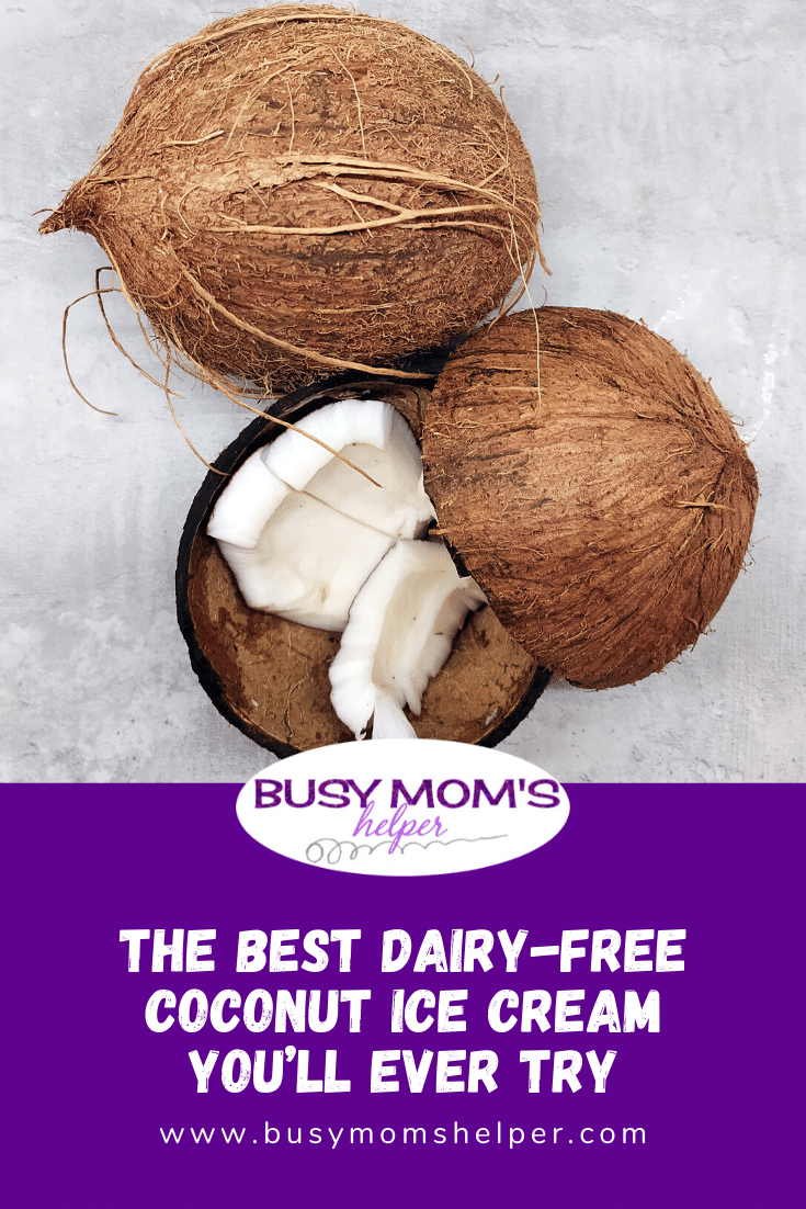 The Best Dairy-Free Coconut Ice Cream You'll Ever Try