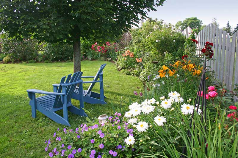 Colorful Adirondack Chairs Gardening